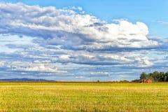 Korrel het oogsten combineert royalty-vrije stock foto's
