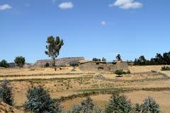 Korrelgebieden en landbouwbedrijven in Ethiopië stock foto