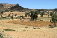 Korrelgebieden en landbouwbedrijven in Ethiopië royalty-vrije stock afbeeldingen
