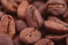 Korrels van koffie Royalty-vrije Stock Foto's