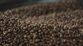 Korrels van koffie in een koffiemolen stock footage