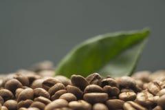 Korrels van koffie op een donkere achtergrond Royalty-vrije Stock Foto