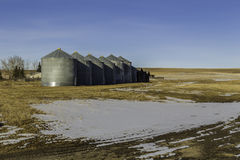 Korrelsilo's in Bevroren Alberta Stock Foto's