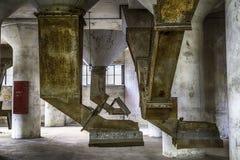 Korrelspruiten in oude silo stock fotografie