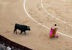 Korrida in Madrid. Matador teases bull with muleta Royalty Free Stock Photos