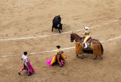 Korrida in Madrid Royalty Free Stock Photography