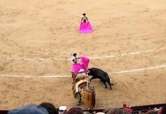 Korrida in Madrid Royalty Free Stock Photos