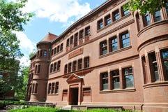 korridoren harvard avskiljer universitetargården Fotografering för Bildbyråer