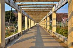 korridorpark royaltyfria bilder