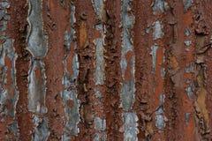 Korrosion av metallyttersida och erosion av målarfärg rostig yttersida arkivbild