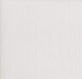 korrugerad white för papp Royaltyfri Fotografi