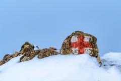kors isolerad röd teckenwhite Arkivfoto