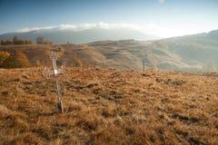Kors på ett fält Arkivfoto