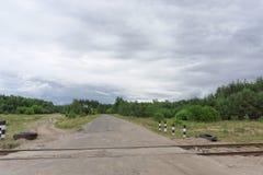 Korsa den gamla järnväg linjen och landsvägen i skogen Ryssland Arkivbild