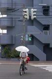 Korsa gatan på cykeln Royaltyfria Bilder