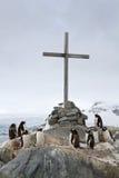 Korsa på platsen var övervintra för britten och den Gentoo pingvinet Royaltyfria Foton