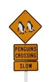 korsande isolerat pingvintecken Royaltyfri Bild
