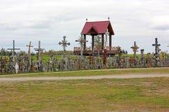 korsar kullen lithuania royaltyfria bilder