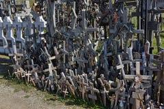 korsar kullen lithuania Arkivbilder