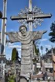 korsar kullen lithuania Fotografering för Bildbyråer