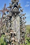 korsar kullen lithuania Royaltyfri Fotografi
