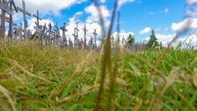 korsar kullen lithuania Jordsikt i sommarsäsong Arkivfoton