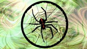 Korsfararespindeln väver dess rengöringsduk Livlig svart spindel på grön oskarp naturlig bakgrund stock video