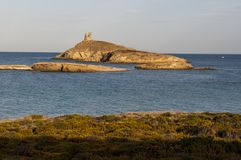Korsika Corse, Cap Corse, övreCorse, Frankrike, Europa, ö Royaltyfri Bild