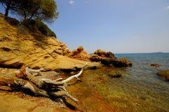 Korsika-Landschaft (Frankreich) Lizenzfreie Stockbilder