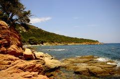 Korsika-Landschaft (Frankreich) Stockbild