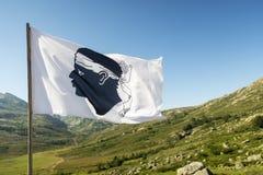 Korsikansk flagga Arkivfoton