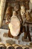 Korsikanska korvar 2 Arkivfoto