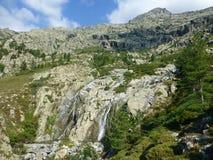Korsikanskt landskap med vattenfallet arkivfoto