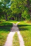 Korsning av vandringsled i parkera Arkivfoton