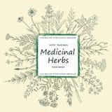 Kort av medicinska örter och blommor vektor illustrationer