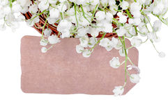 Kort bland liljekonvaljerna Royaltyfri Fotografi