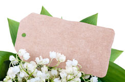Kort bland liljekonvaljerna Fotografering för Bildbyråer