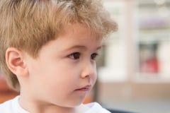 Kort blont hår är även kallare Litet barn med stilfull frisyr Litet barn med kort frisyr Liten pojke med royaltyfri foto
