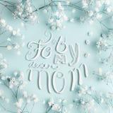 Kort för hälsning för moderdag med för min raringmammabokstäver och älskvärda små vita Gypsophilablommor på turkosbakgrund royaltyfri fotografi