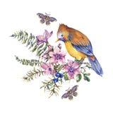 Kort för hälsning för skog för vattenfärgtappning blom- med fågeln, bär, mal, ormbunke, rosa blommor royaltyfri illustrationer