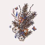 Kort för hälsning för vår för vektortappning blom- med granfilialer, bomull, blommor och fjärilar stock illustrationer