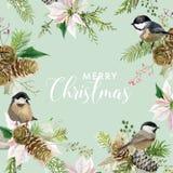 Kort för hälsning för vinterjulfåglar Retro bakgrund för blom- julstjärna Designmall för semesterperiodberöm vektor illustrationer
