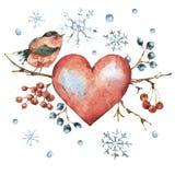 Kort för hälsning för vintervattenfärg naturligt med röd hjärta, fågel stock illustrationer