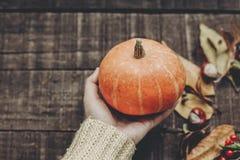 kort för halloween eller tacksägelsebegreppshälsning hand i tröja Fotografering för Bildbyråer