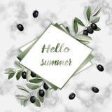 Kort för Hello sommarhälsning med Olive Brunches Arkivfoto