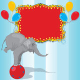 Kort för inbjudan för deltagare för cirkuselefantfödelsedag royaltyfri illustrationer