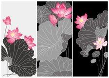 Kort för Lotus blomma Arkivbilder