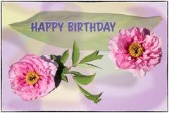 Kort för lycklig födelsedag med pioner royaltyfri fotografi