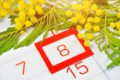 8 kort för mars - mimosablommor över kalendern med det inramade 8 datumet för mars Royaltyfri Fotografi