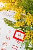 8 kort för mars - mimosablommor över kalendern med det inramade 8 datumet för mars Royaltyfri Foto